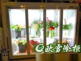 河南鲜花展示柜哪里有订做的【欧雪冷柜】