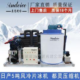 日产5吨片冰机 都灵风冷外贸出口片冰机 食品保鲜鳞片制冰机