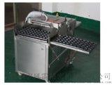 穴盤播種機 點播機 育苗機(高效 1000盤/小時)-常州風雷