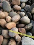 5-8鹅卵石多少钱一吨 保定鹅卵石厂家