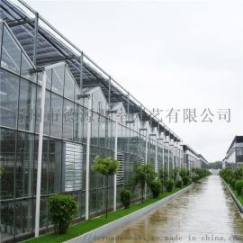 玻璃温室大棚 智能温室厂家 生态餐厅温室
