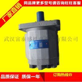 合肥长源液压齿轮泵CBHT-F325平右法兰齿轮泵