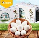番鴨蛋供應