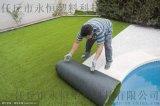 幼儿园人造草坪 环保安全放心 仿真草皮塑料假草直销