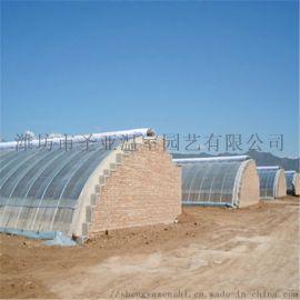 智能化育苗温室 节能日光温室 蔬菜冬暖式温室大棚