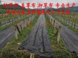 园艺地布 盖草布 防草布 专业除草 厂家直销