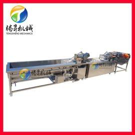 腾昇机械定做果蔬清洗流水线 中央厨房生产设备