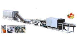 净菜加工生产线设备首选诸城汇海食品机械