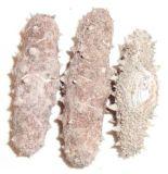 海参鲍鱼虾微波烘干杀菌设备