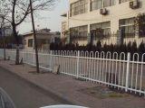 人行道护栏  人行道防护栏厂家批发