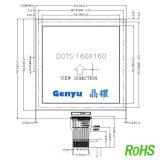 深圳LCD液晶屏厂家Genyu/晶耀GY-160160LCD点阵屏可定做单色COG手持设备医疗工控液晶屏