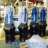 大流量潛水軸流泵  潛水軸流泵怎麼安裝