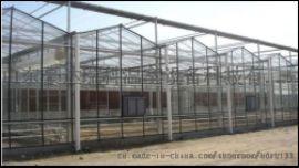 供应山东豪达瑞科生产种植观光连栋智能玻璃温室