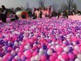百萬海洋球出租 百萬海洋球定做 百萬海洋球租賃 海底尋寶嗨起來