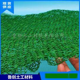 植草護坡三維植被網 護坡三維土工網墊 綠化三維網