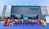 新能源汽车4S店门头外墙铝格栅-【铝单板展厅风彩】