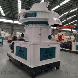 大型木屑颗粒成套生产线 红木松木颗粒机设备厂家