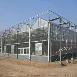 智能阳光板温室 温室承建 温室骨架