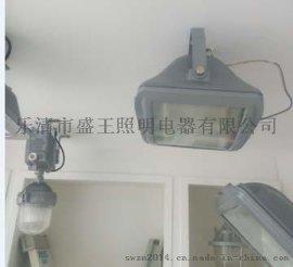CYGF880新型节能泛光灯
