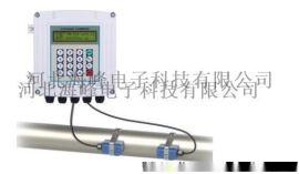 外夹式超声波流量计TDS-100F1-B