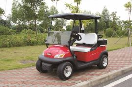 成都朗動2座高爾夫球車