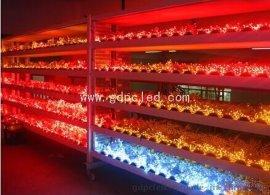 12V红光灯串、深圳灯串、装饰灯