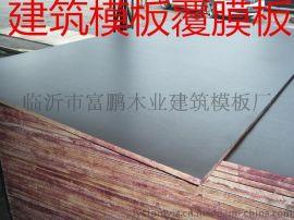 覆膜膠合板  楊雜芯18mm