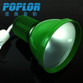 品牌POPLOR 型号SXD-MX-DGL-20W LED生鲜灯,