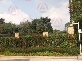 广州艾礼富电子单防区脉冲电子围栏控制器(四线制)WS-8008-1LS
