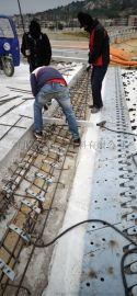 SF梳形钢板桥梁伸缩装置