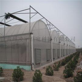 连栋薄膜温室 温室材料 育苗温室 薄膜温室设计