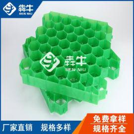 深圳市7公分厚PP植草格耐压-草坪砖厂家