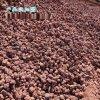 河北本格供应红色火山石颗粒3-5厘米
