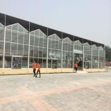 農業溫室大棚設施玻璃溫室