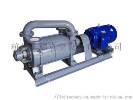 泡沫挤出机真空泵 SK系水环真空泵
