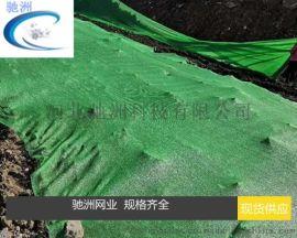 衡水2000目六针绿色防尘网