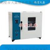 电热鼓风干燥箱TX101系列、实验室干燥箱、煤炭化验