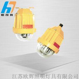 BPC8765LED防爆平台灯/220v防爆灯具价格