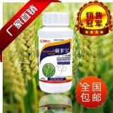 小麥專用葉麪肥 稼多寶葉麪肥