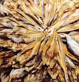 海魚烘乾機出品高,效率高,市場佔有率高