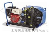 【网上可查】200公斤潜水空气压缩机