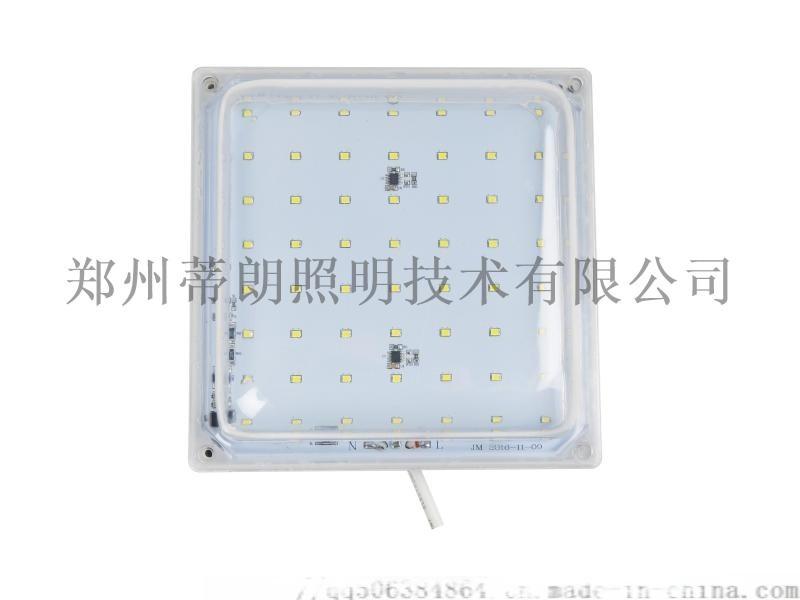 LED冷库灯220V20W
