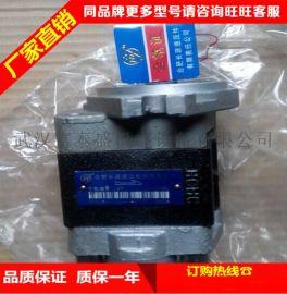 合肥长源液压齿轮泵CBHC-F20-ALΦ电动叉车低噪音齿轮油泵