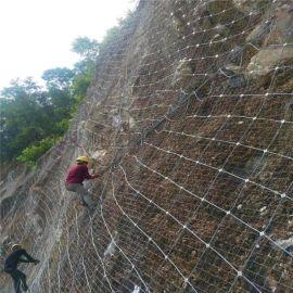 厂家现货 sns柔性边坡防护网 防山体滑坡被动边坡防护网定制