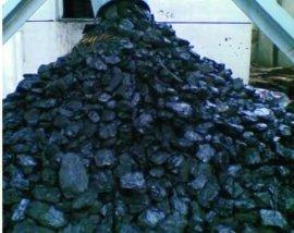 电煤筛分设备