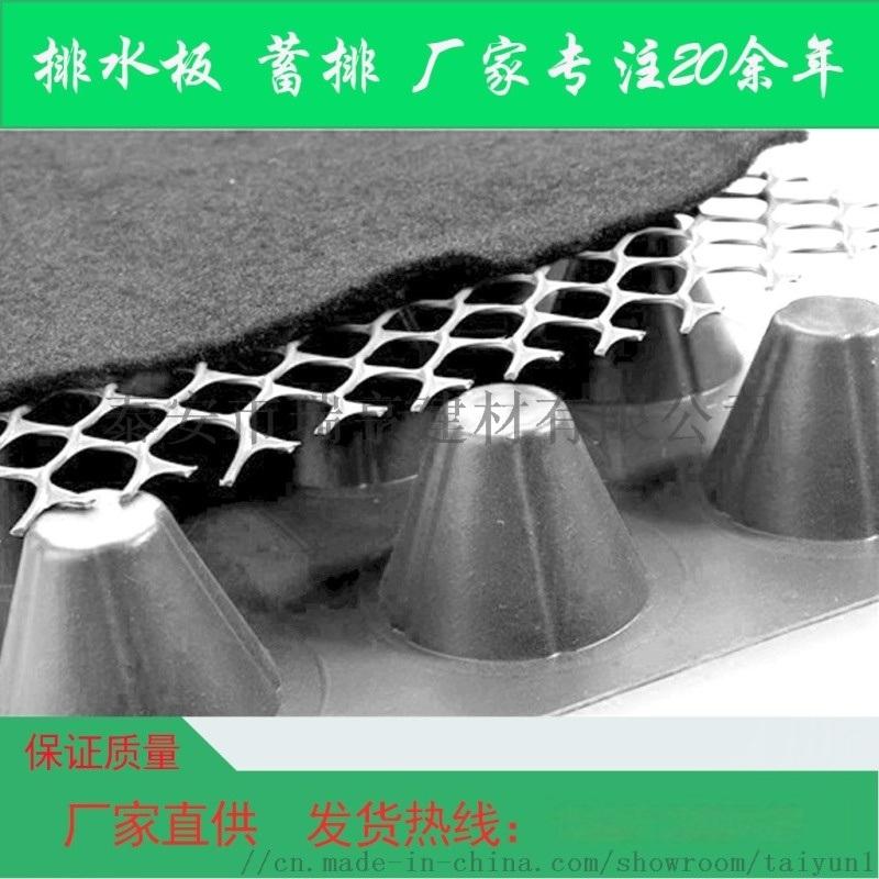 排水板 屋頂綠化蓄排水板 塑料疏水板 地下車庫排水板 廠家   質優價廉