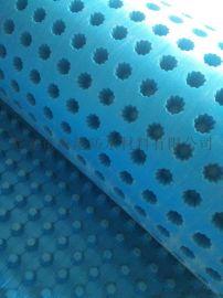 海绵城市建设用优质排水板