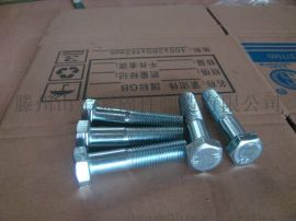 LT牌 蓝白镀锌 碳钢 六角螺栓六角螺母 (半牙六角螺栓)
