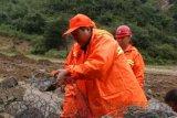 南京工廠直供鍍鋅石籠網 包塑格賓網 鍍高爾凡雷諾護墊
