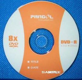 可刻录光盘 (1X-8X DVD-R)
